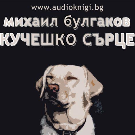 Kucheshko-sarce